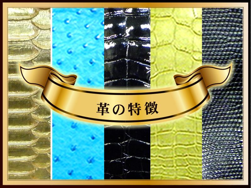 特集コンテンツ「爬虫類皮革の特徴」