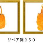リペア例250:オーストリッチ2本手ハンドバッグ オレンジ